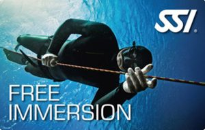 Free Immersion (FIM)